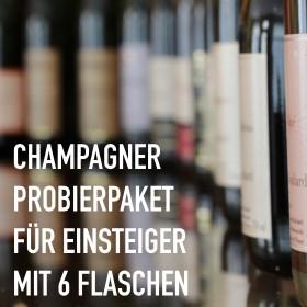 Champagner für Einsteiger - 6 Flaschen 0,75 ltr. mit detaillierten Beschreibungen
