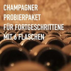 Champagner für Fortgeschrittene - 6 Flaschen 0,75 ltr. mit detaillierten Beschreibungen