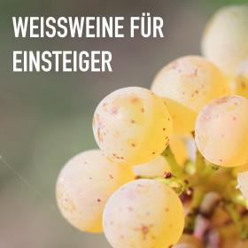 Weißweine für Einsteiger - 6 Flaschen 0,75 ltr. mit detaillierten Beschreibungen