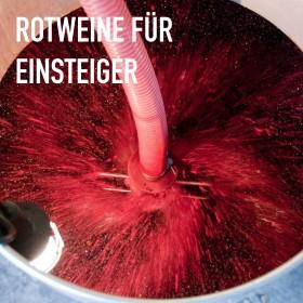 Rotweine für Einsteiger - 6 Flaschen 0,75 ltr. mit detaillierten Beschreibungen<br>