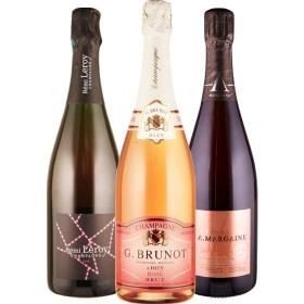 Rosé Champagner - 4 Flaschen 0,75 ltr. mit detaillierten Beschreibungen