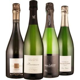 Champagner knochentrocken für Puristen - 4 Flaschen 0,75 ltr. mit detaillierten Beschreibungen