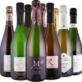 Champagner Seminar für zu Hause - 9 Flaschen 0,75 ltr. mit detaillierten Beschreibungen