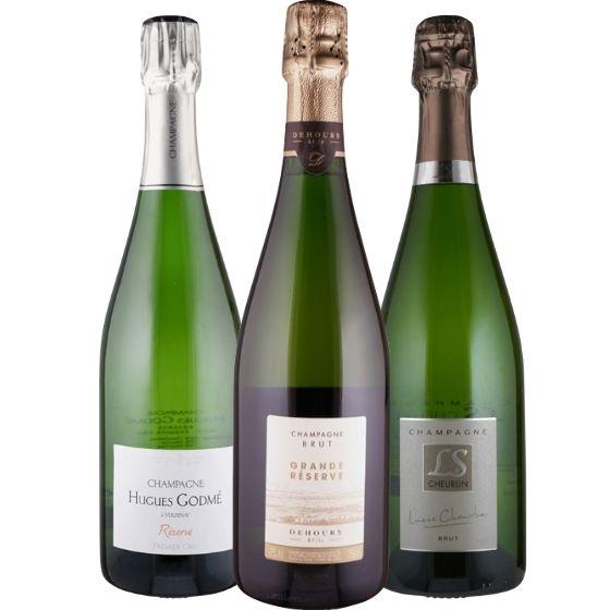 Unsere Champagner für Einsteiger - 3 Flaschen 0,75 ltr. mit detaillierten Beschreibungen von