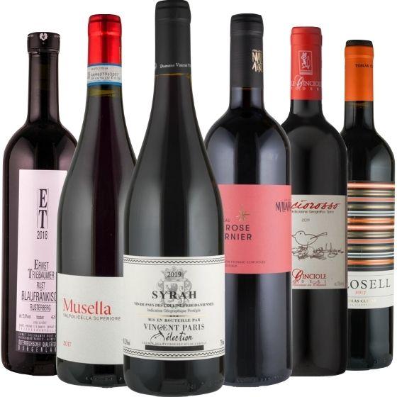 Unsere Lieblinge in rot! Teil 2 - 6 Flaschen 0,75 ltr. mit detaillierten Beschreibungen