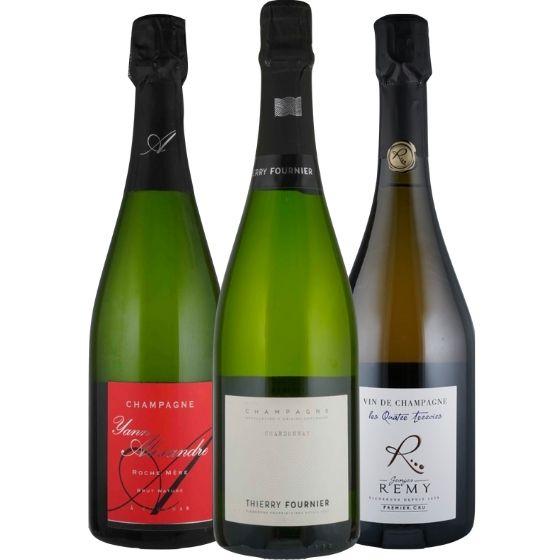 Neues aus der Champagne! - 3 Flaschen 0,75 ltr. mit detaillierten Beschreibungen