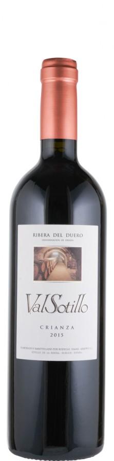 Ribera del Duero Crianza Val Sotillo 2017  - Arroyo, Ismael