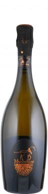 Champagne Grand Cru extra brut Cuvée Mycorhize  - FR-BIO-10 - De Sousa et Fils