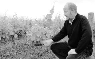 Weingut Jacquesson