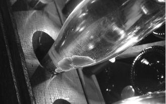 Weingut Agrapart & Fils